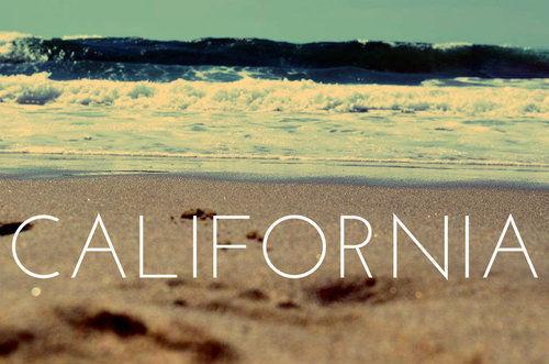 beach-california-summer-text-Favim.com-534555